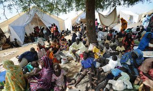 Thousands of people displaced by conflict in Kordofan State have sought refuge in an area secured by UNMIS.