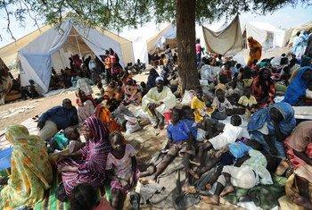 Des milliers de personnes déplacées par le conflit dans le Sud-Kordofan ont trouvé refuge dans une zone sécurisée par l'ONU.