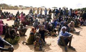 Des Somaliens attendent d'être enregistrés au camp de réfugiés de Dadaab, au Kenya.