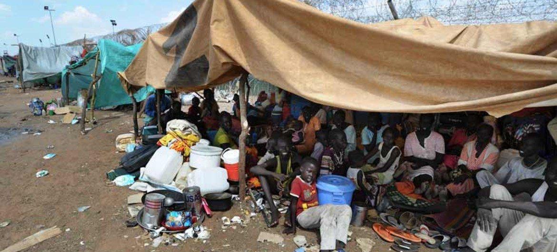 Desplazados en<br>Kordofán del Sur