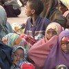 Des réfugiés somaliens dans le nord-est du Kenya.