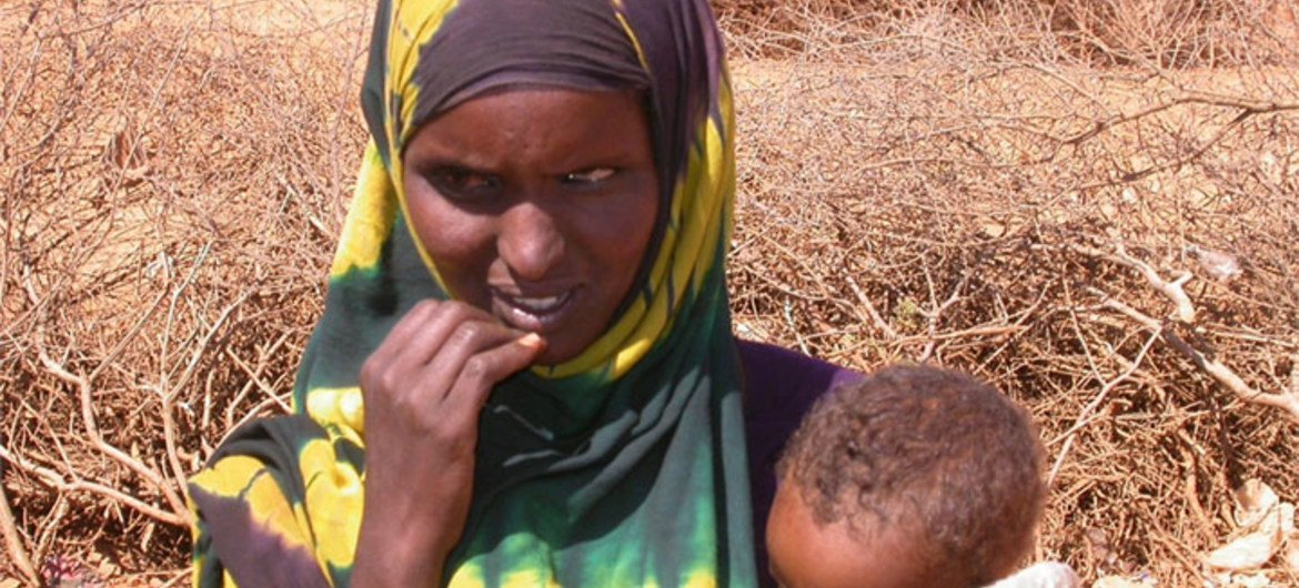 The drought in Somalia has displaced thousands of families