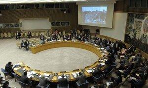 Security Council.