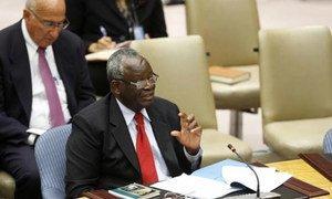 Special Representative Ibrahim Gambari.
