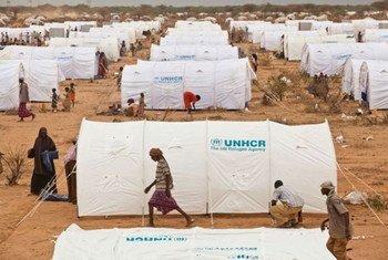 Campamento de Dadaab