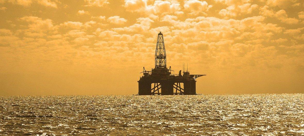 Поиск шельфовых нефтяных месторождений и бурение скважин - серьезная угроза подводному миру