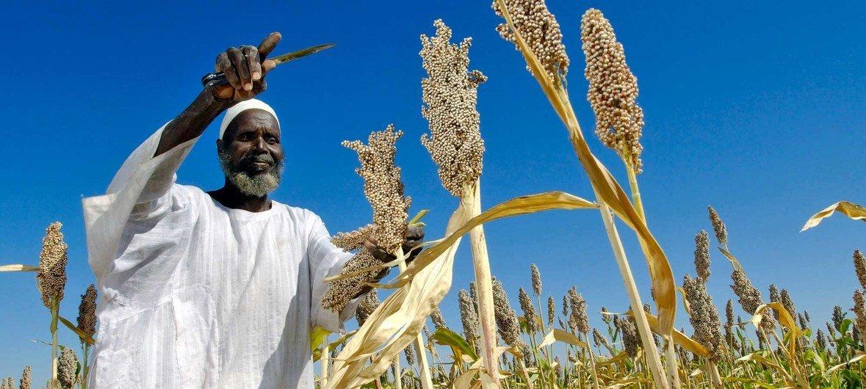 Photo: FAO