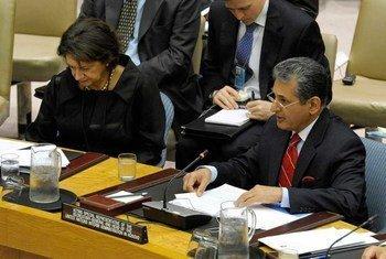 The Secretary-General's acting Special Representative for Kosovo, Farid Zarif, addresses the Security Council