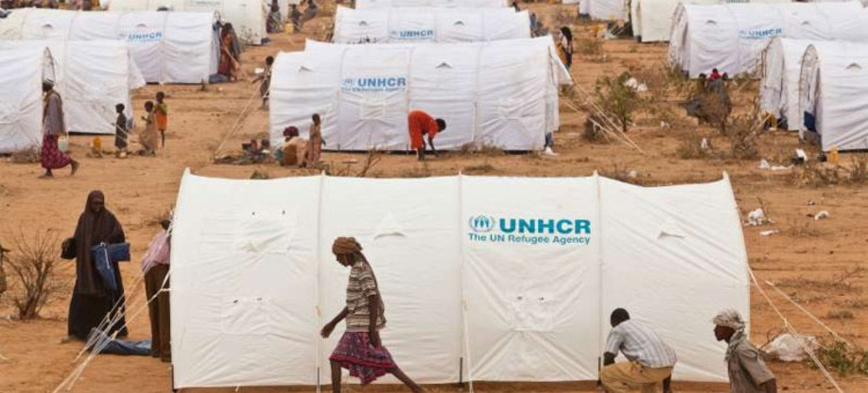 Un camp de réfugiés à Dadaab, au Kenya.