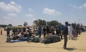 Le camp de Choucha en Tunisie. Photo UNHCR/F.Kayal