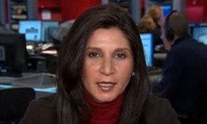 Faiza Patel, Présidente-rapporteur du Groupe de travail de l'ONU sur l'utilisation de mercenaires.