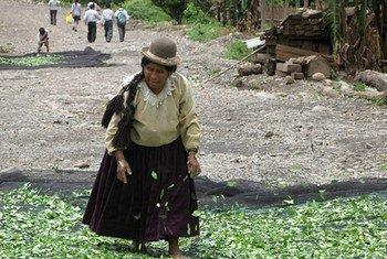 Una mujer indígena, vestida con traje tradicional, en Bolivia.