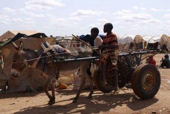 Des réfugiés somaliens à Dollo Ado, en Ethiopie.