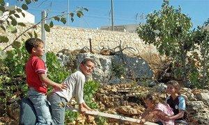Des enfants palestiniens jouent à Khallet Zakariya à côté de la colonie israélienne d'Alon Shvut.