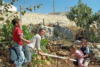 Palestinian children playing in Khallet Zakariya beside the Israeli settlement of Alon Shvut. IRIN/Erica Silverman