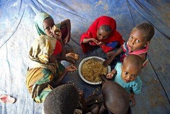 آلاف الصوماليين يفرون إلى مخيمات اللاجئين في إثيوبيا بسبب المجاعة