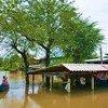 Une zone inondée au nord de Bangkok, en Thaïlande.