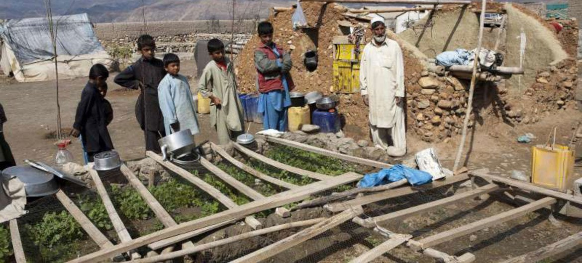 Afghan returnees at their vegetable patch in eastern Nangarhar province, one of the main areas of return from Pakistan