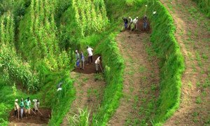 Rwanda report shows successes and challenges of post-conflict sustainable development