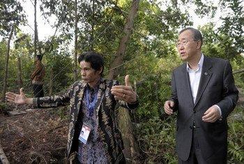 Le Secrétaire général Ban Ki-moon rencontre une communauté autochtone affectée par la déforestation à Bornéo, en Indonésie. (17 novembre 2011)