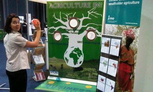 Playing a ball game at the IFAD booth at the UN Climate Change Conference in Durban, South Africa