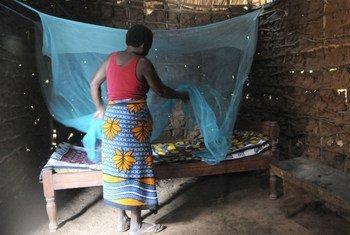 Les moustiquaires imprégnées d'insecticide sont cruciales dans la lutte contre le paludisme. Photo IRIN/Wendy Stone