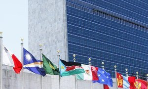 Flags of Member States fly in front of the United Nations Headquarters building.