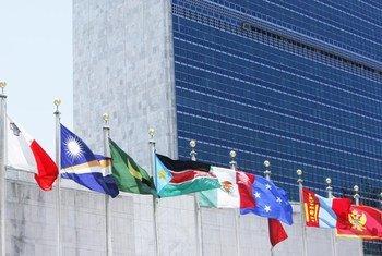 Les drapeaux des Etats membres flottent devant le Secrétariat des Nations Unies, à New York.