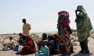 Somali refugees wait on Yemen's Red Sea coast for transport to Aden.