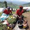 Raia wa DRC akifua nguo zake katika kambi  ya wakimbizi wa ndani iliyoko milimani eneo la Masisi katika mkoa wa Kivu Kaskazini.