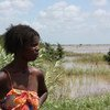 Une femme dans la province de Maputo, au Mozambique, regarde des terres inondées. Photo PAM/N. Scott