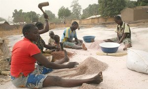 Women in the northwestern Central African Republic town of Paoua processing millet.