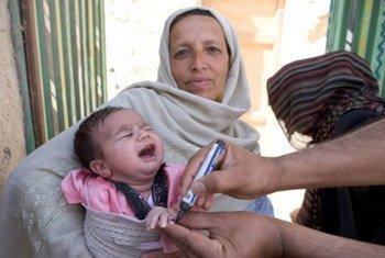 Campaña de vacunación<br>en Afganistán
