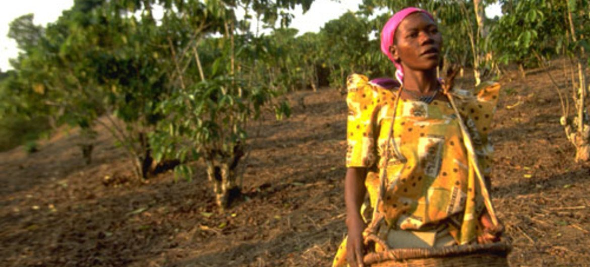 International Women's Day 2012: equality begins at home for rural girls and women.