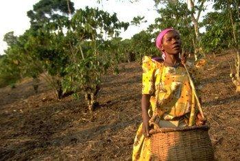 Journée Internationale de la femme 2012.