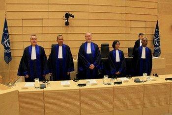 国际刑事法院法官。