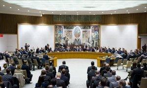 Le Conseil de sécurité de l'ONU. Photo ONU/Evan Schneider
