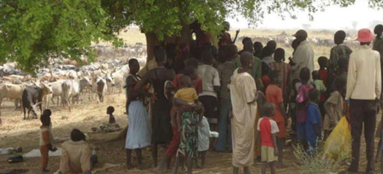Desplazados de Sudan del Sur en Etiopia  Foto:  ACNUR/S.Tessema