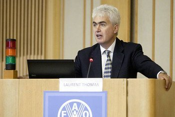 Laurent Thomas, FAO Assistant Director-General for Technical Cooperation.
