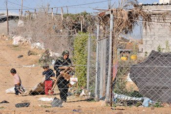 امرأة تجمع الحطب والورق  في عزبة عبد ربه. المصدر: شريف سرحان