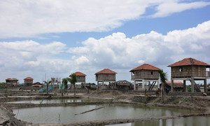"""In Bangladesh, an innovative """"disaster resilient village"""" was built in Shymnagar for a coastal village wiped out after Cyclone Aila."""