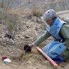Especialista en desminado en Afganistán.