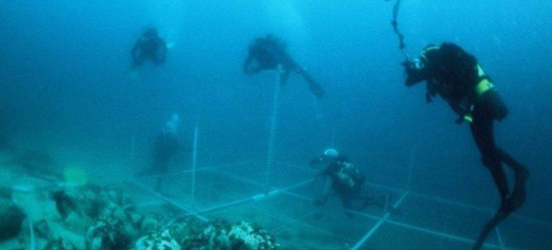 Estudio del fondo marino  Foto de archivo: UNESCO/D. Frka