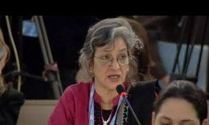 Special Rapporteur on cultural rights, Farida Shaheed.