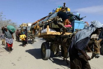Somalis fleeing the insurgent-held town of Afgooye for Mogadishu.