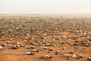 Vue aérienne du complexe de Dadaab, le plus vaste camp de réfugiés au monde, situé dans le nord-est du Kenya.