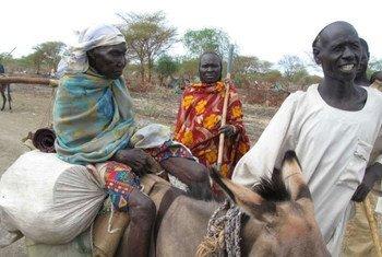 Dungaz Tatalla et sa famille ont marché pendant près d'un mois, en se nourrisant exclusivement de feuilles pour survivre. Ils se trouvent maintenant dans le camp de transit de Rum, dans l'est du Soudan du Sud.