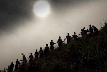 Trabajadores en Puerto Príncipe, Haití, plantan vegetación para evitar inundaciones. Foto: ONU/Logan Abassi