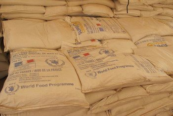 Supplies from the World Food Programme (WFP) for Malian refugees near M'bera in Mauritania.