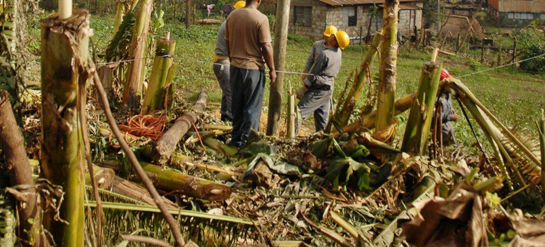 Aftermath of Hurricane Sandy in Nicaro, Mayarí municipality, Cuba.